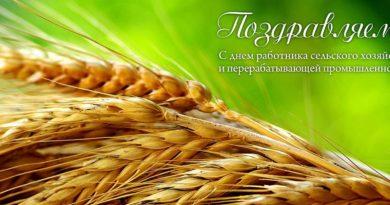 День работников сельского хозяйства. Поздравляет Евгений Кучумов.
